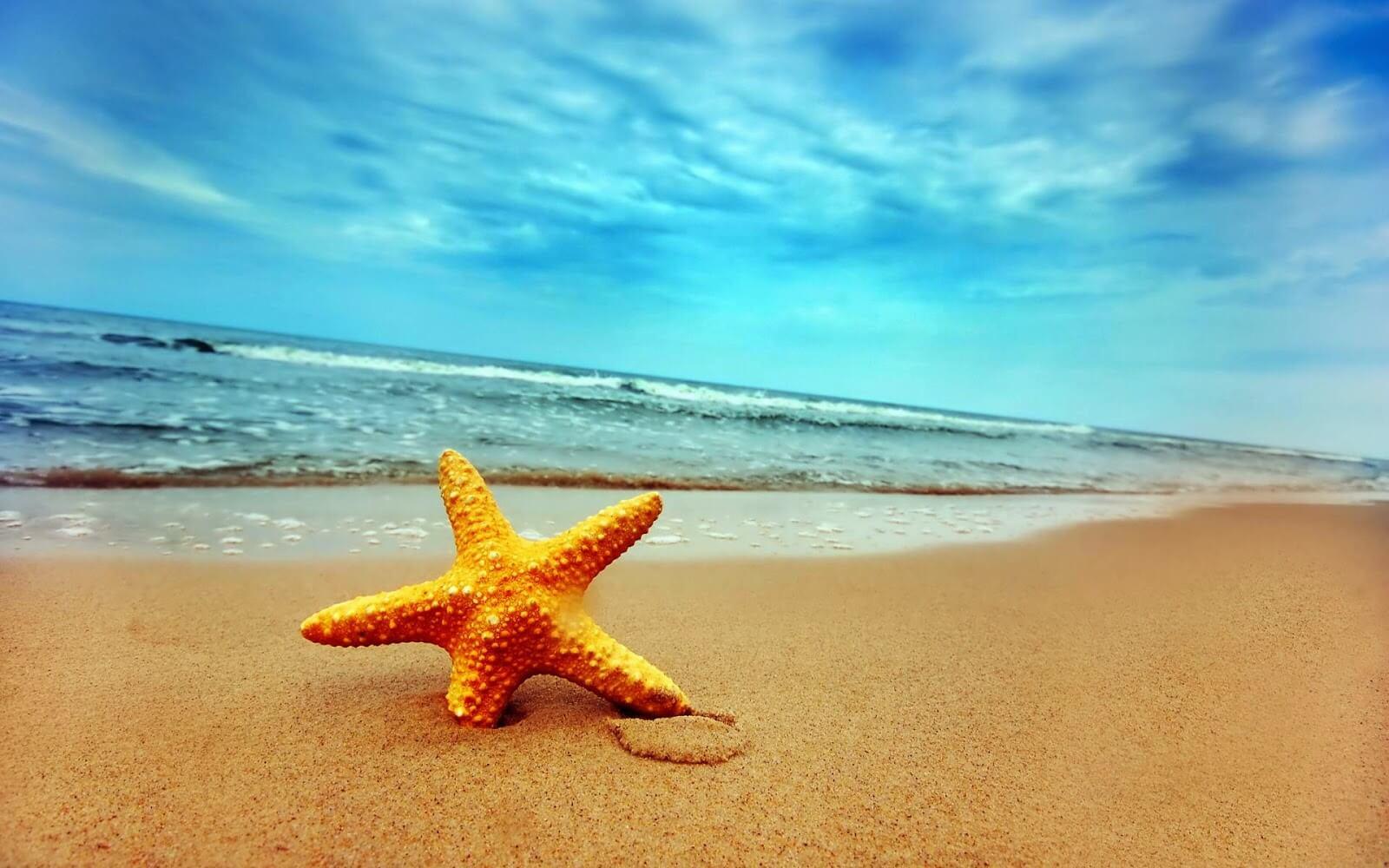 Kinh nghiệm khi chụp ảnh ở biển